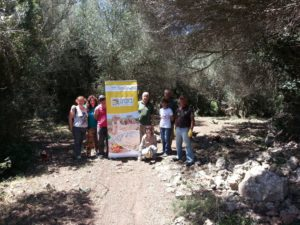 Land stewardship volunteers in Talati de Dalt