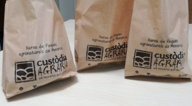 Paper bags to replace plastic ones