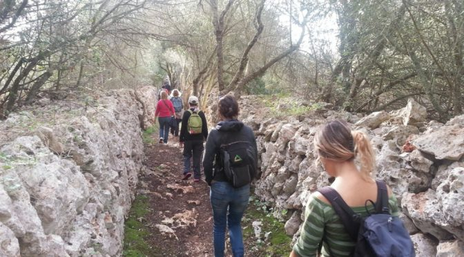 Sunday 7 October Talayot Excursion