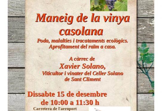 Tomorrow, workshop on the care of vines at Es Viver