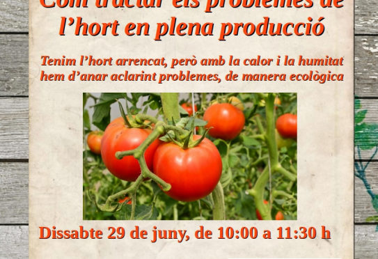Saturday 29, workshop on how to treat the problems of the kitchen garden