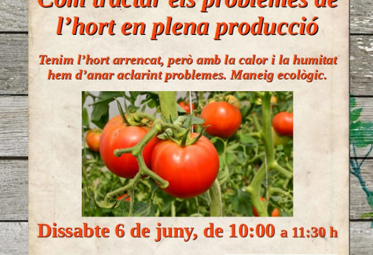 Saturday 6 June, a workshop on how to deal with kitchen garden problems