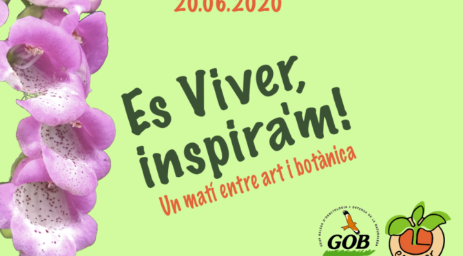 "Art Competition ""Es Viver inspires me"""