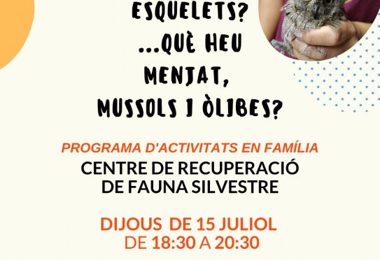 Thursday, family workshop at the Recuperation Centre for Wild Animals