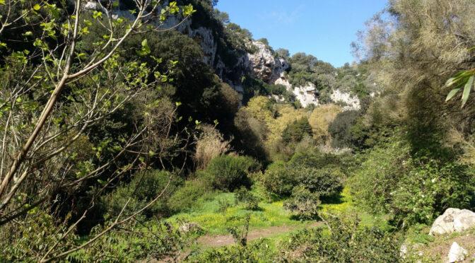 Es Molí de Baix joins the Land Stewardship Scheme