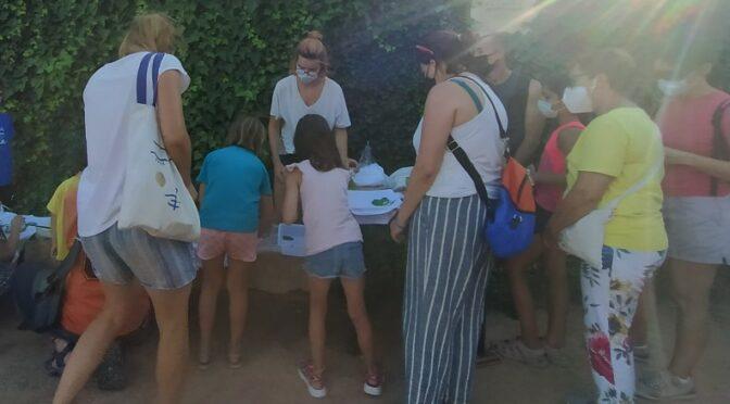 Thursday 12 August:  family workshop in the animal hospital